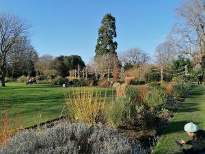 Things to do in Chichester West Sussex